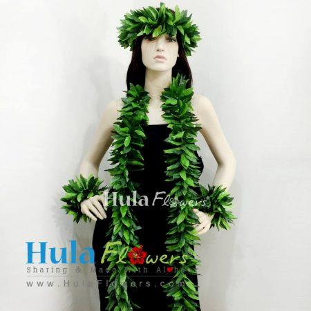 Hula-Maile-Set-1