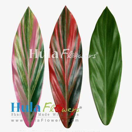 Silk-Ti-Leaves17