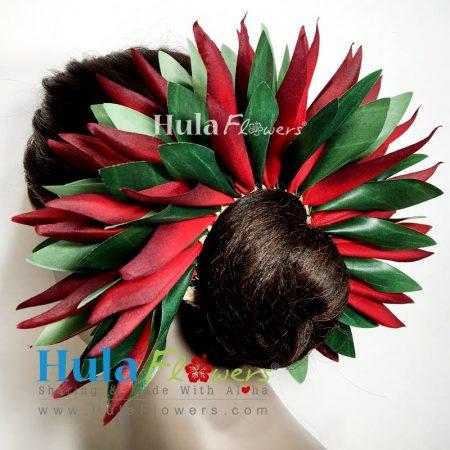 Ti-Bird-7-2