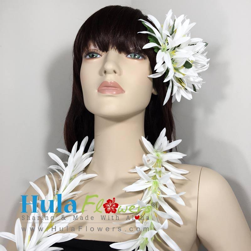 # 01 White