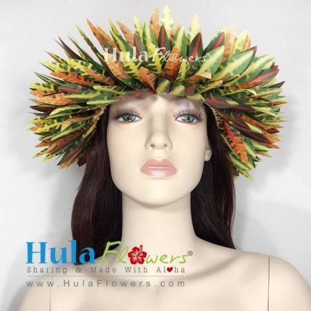 Haku-Croton-2