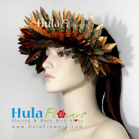 Haku-Croton-Half-2